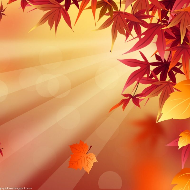 10 Latest Free Fall Background Images FULL HD 1080p For PC Desktop 2021 free download http autumn photos 2011 autumn hd wallpapers to download the 800x800