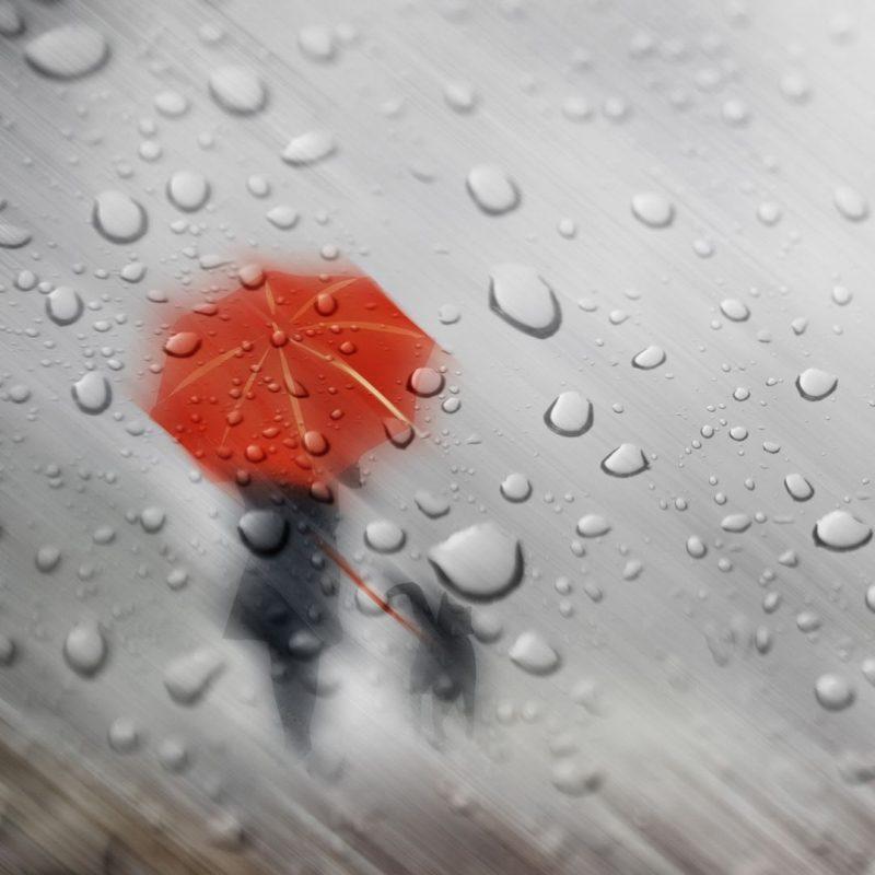 10 Best Rain Wallpaper Hd For Mobile FULL HD 1920×1080 For PC Desktop 2021 free download http www vactualpapers gallery walking in the rain mobile hd 800x800