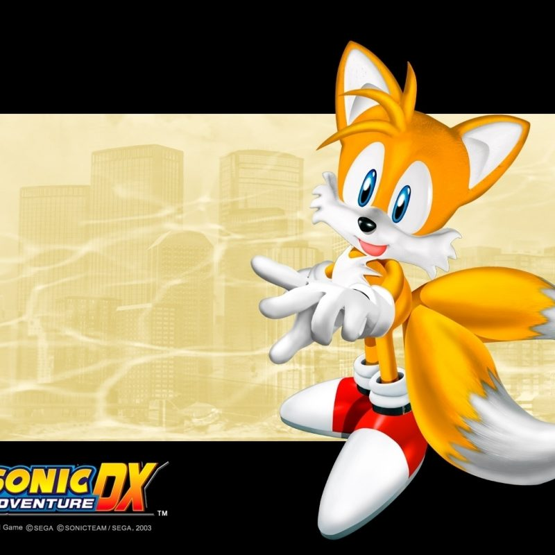 10 Most Popular Sonic Adventure Dx Wallpaper FULL HD 1080p For PC Background 2020 free download huge sonic fan images sonic adventure dx hd wallpaper and background 2 800x800