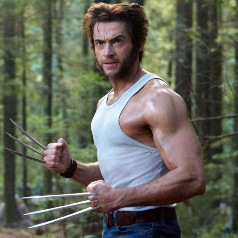10 Best Wolverine Images Hugh Jackman FULL HD 1080p For PC Background 2020 free download hugh jackman confie quil ne croyait pas en wolverine 800x800