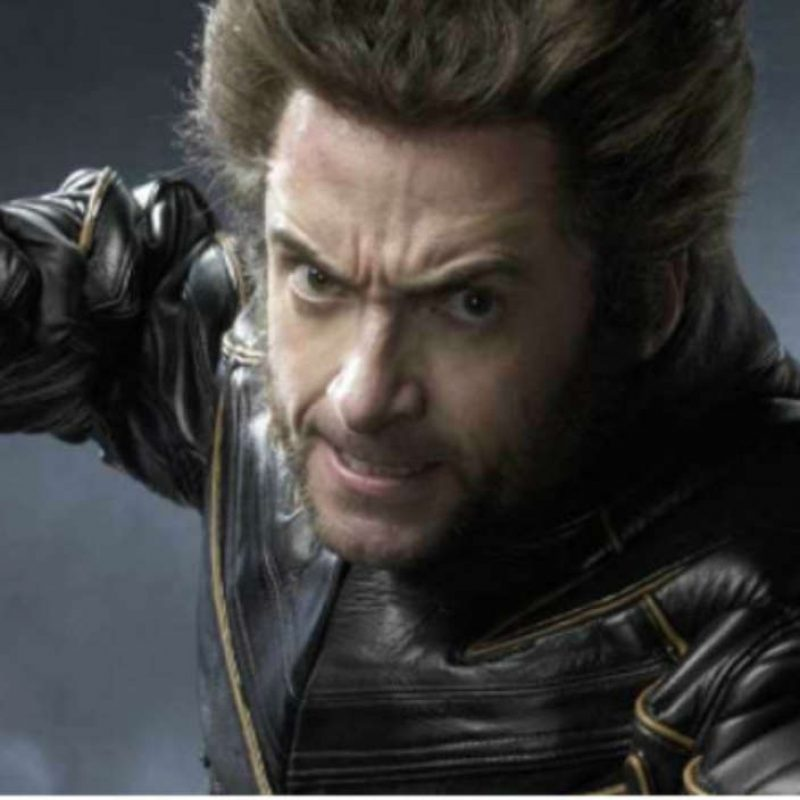 10 Best Wolverine Images Hugh Jackman FULL HD 1080p For PC Background 2020 free download hugh jackman didnt know what a wolverine was when he was cast 800x800