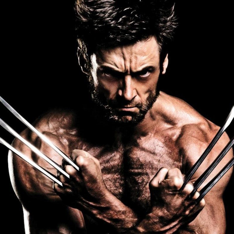 10 Latest Hugh Jackman Wolverine Wallpaper FULL HD 1080p For PC Desktop 2018 free download hugh jackman the wolverine wallpaper 85614 800x800