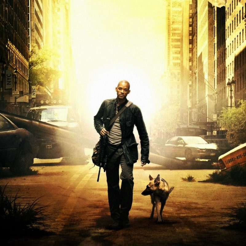 10 Top I Am Legend Stills FULL HD 1920×1080 For PC Background 2020 free download i am legend wallpapers c2b7e291a0 800x800