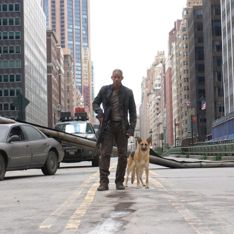 10 Top I Am Legend Stills FULL HD 1920×1080 For PC Background 2020 free download i am legend wallpapers hd download 800x800