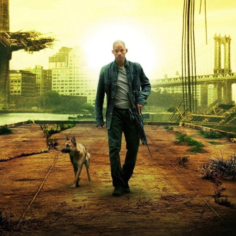 10 Top I Am Legend Stills FULL HD 1920×1080 For PC Background 2020 free download i am legend wallpapers wallpaper cave 1 800x800