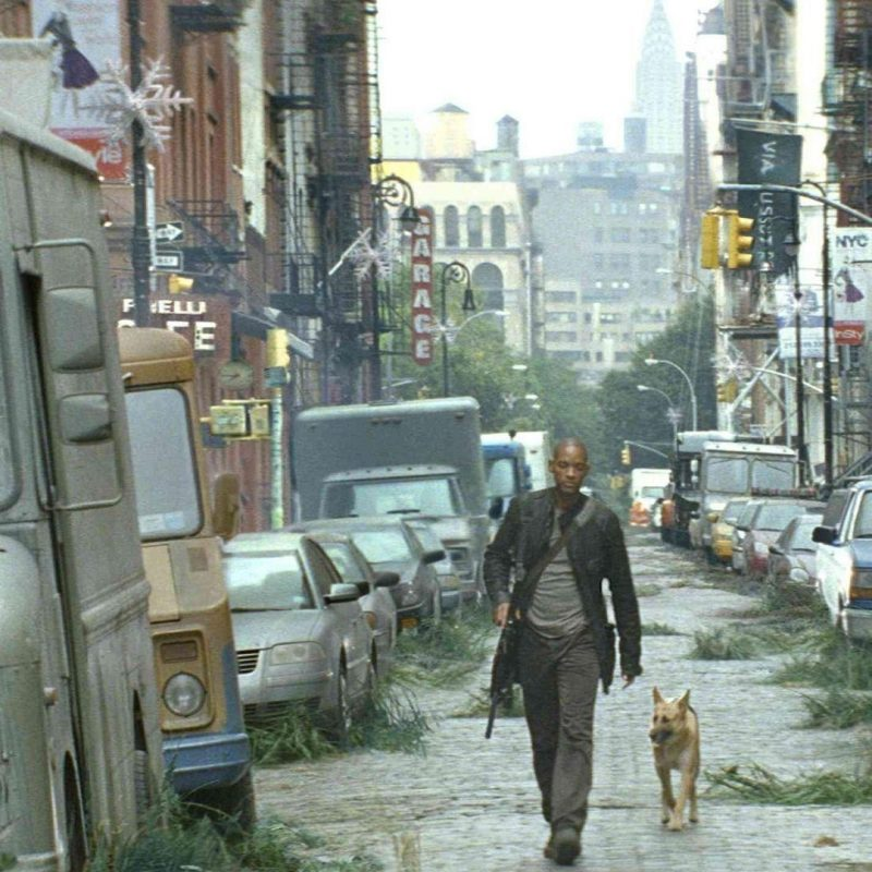 10 Top I Am Legend Stills FULL HD 1920×1080 For PC Background 2020 free download i am legend wallpapers wallpaper cave 2 800x800