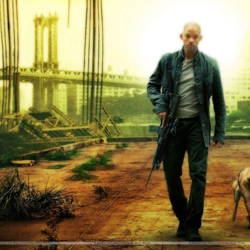 10 Top I Am Legend Stills FULL HD 1920×1080 For PC Background 2020 free download i am legend wallpapers wallpaper cave 3 800x800