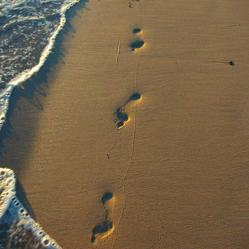 10 Top Footprints In The Sand Pictures FULL HD 1920×1080 For PC Desktop 2020 free download i am more than ready to leave some footprints in the sand living 800x800