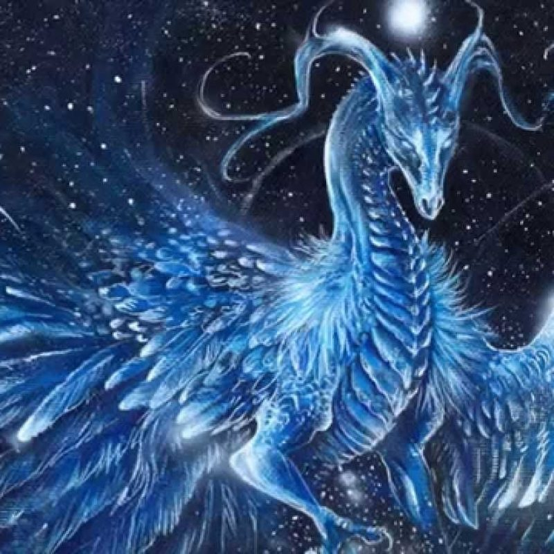 10 Most Popular Pictures Of Ice Dragon FULL HD 1920×1080 For PC Background 2020 free download ice dragons youtube 800x800