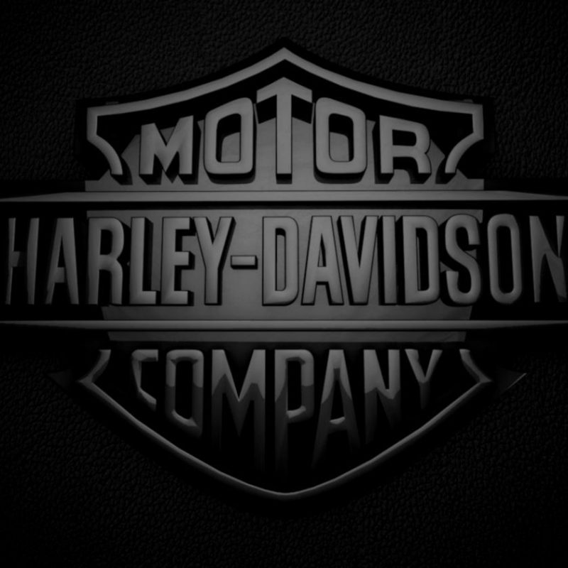 10 Most Popular Harley Davidson Desktop Wallpaper FULL HD 1080p For PC Desktop 2018 free download image for harley davidson skull logo wallpaper desktop 9sp4l 1 800x800