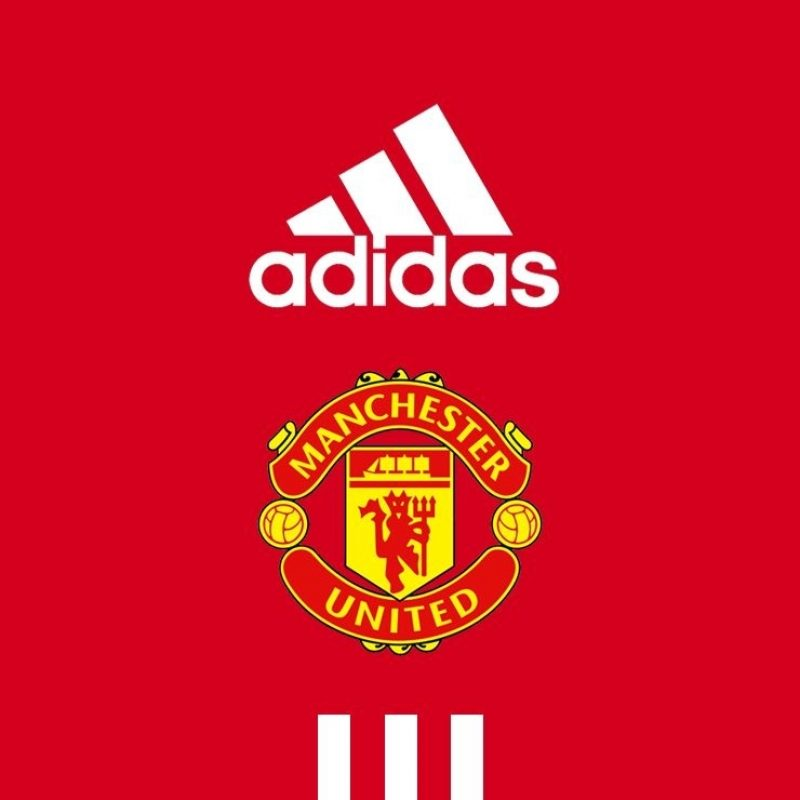 10 Best Manchester United Wallpaper 2016 FULL HD 1080p For PC Background 2020 free download image for manchester united wallpaper ik97b places to visit 1 800x800
