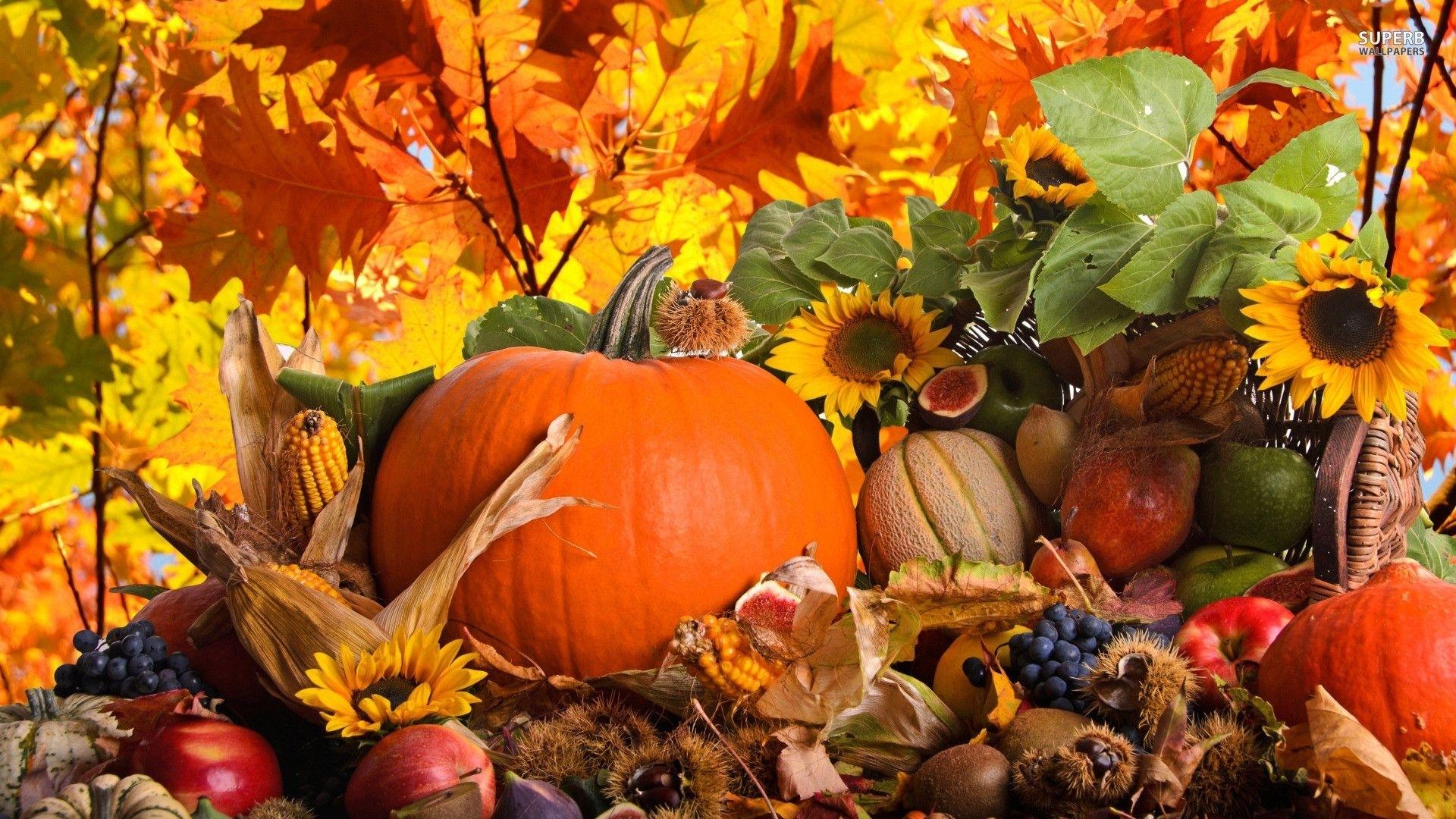 10 new autumn pumpkin desktop wallpaper full hd 1920×1080 for pc