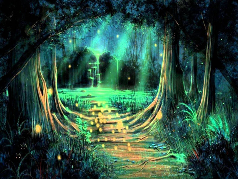 10 Most Popular Dark Enchanted Forest Background FULL HD 1920×1080 For PC Background 2021 free download image result for enchanted forest background father daughter dance 800x600