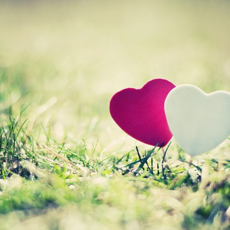 10 Top Cute Love Backgrounds Tumblr FULL HD 1080p For PC Desktop 2021 free download images for tumblr heart photography hearts pinterest 800x800
