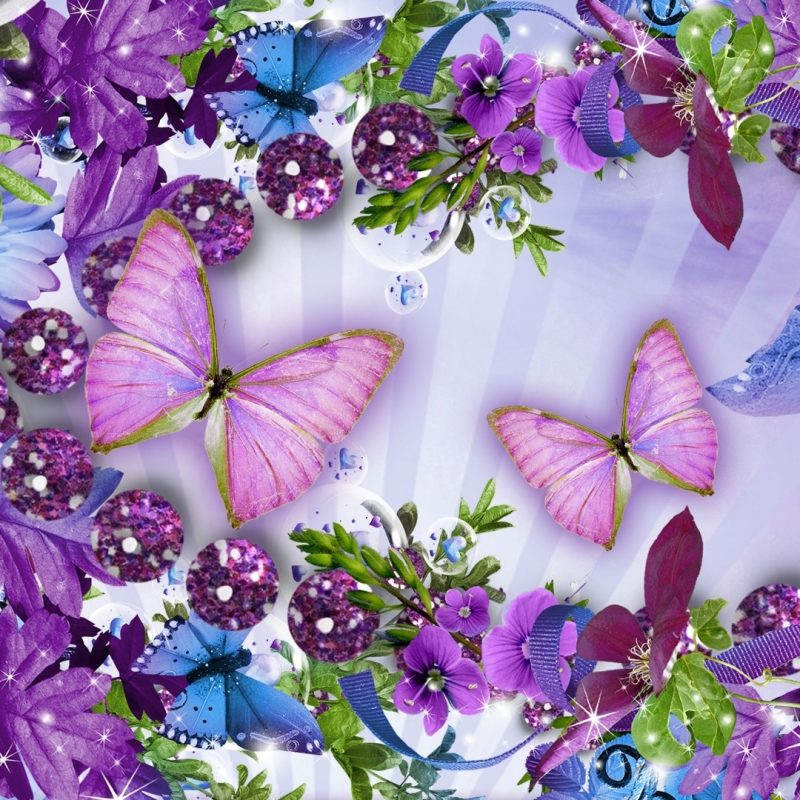 10 Latest Flowers And Butterflies Wallpaper FULL HD 1080p For PC Desktop 2020 free download images of flowers and butterflies bdfjade 800x800