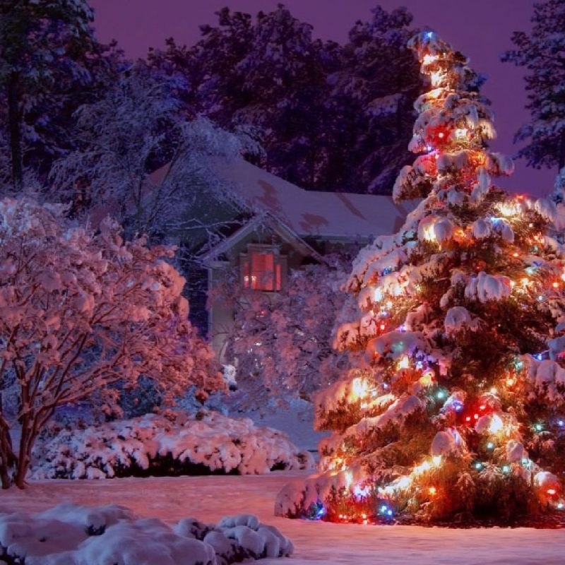 10 Best Winter Christmas Lights Wallpaper FULL HD 1920×1080 For PC Desktop 2018 free download index of cdn hdwallpapers 320 800x800