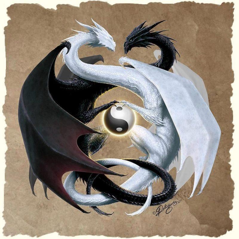 10 Latest Dragon Yin Yang Wallpaper FULL HD 1920×1080 For PC Background 2021 free download innerer frieden entsteht durch bewusstes leben dragons learning 800x800