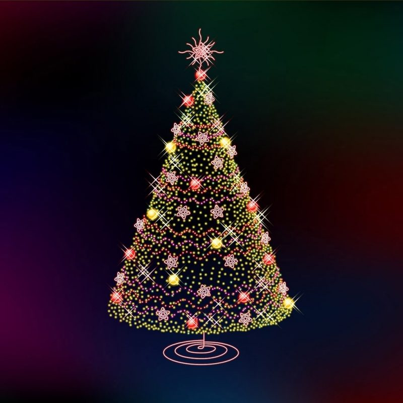 10 Best Free Christmas Trees Wallpaper FULL HD 1080p For PC Desktop 2020 free download ipad wallpapers free download christmas tree ipad mini wallpapers 800x800