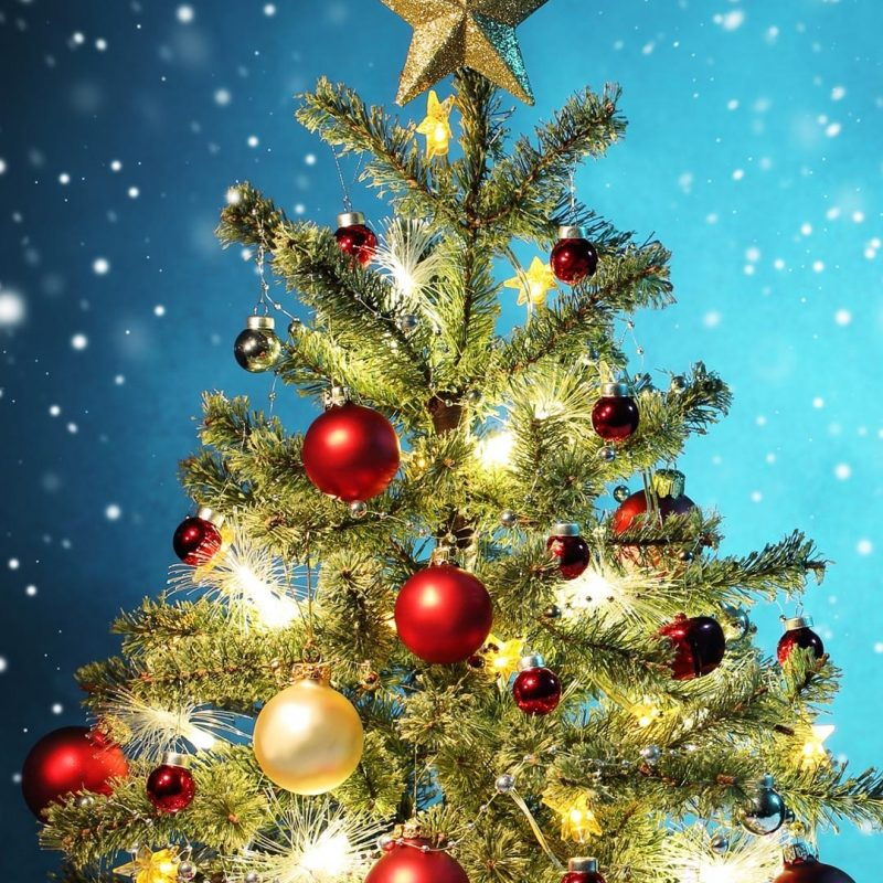 10 Best Christmas Tree Phone Wallpaper FULL HD 1080p For PC Background 2021 free download iphone 6 wallpaper christmas google search iphone wallpaper 800x800