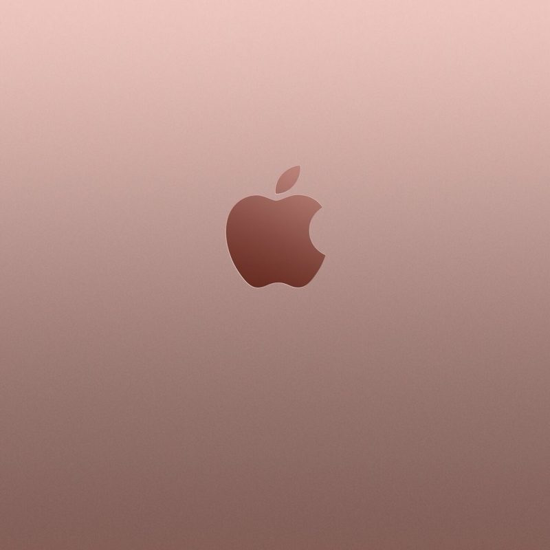 10 Most Popular Rose Gold Iphone Wallpaper FULL HD 1920×1080 For PC Desktop 2020 free download iphone 6s plus rose gold wallpapers phone pinterest gold 800x800