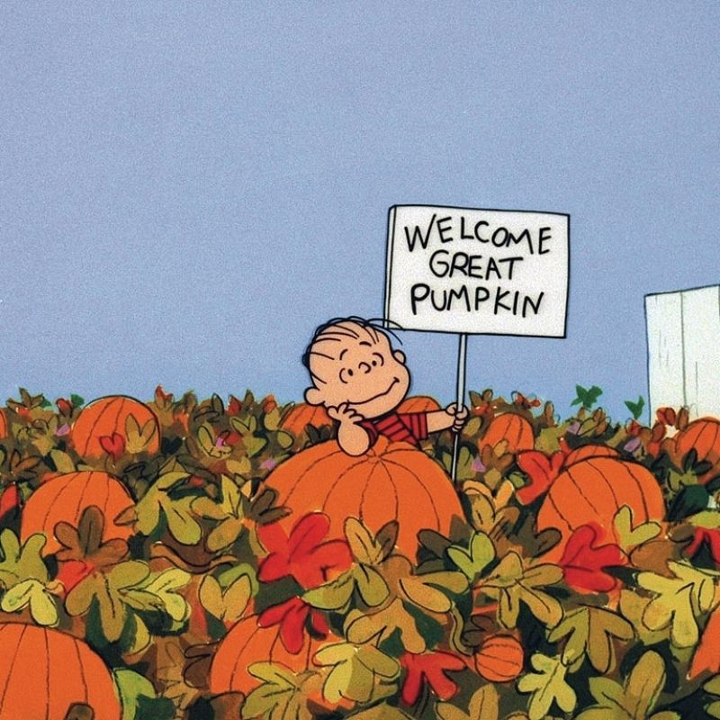 10 Latest Great Pumpkin Charlie Brown Wallpaper FULL HD 1920×1080 For PC Desktop 2018 free download its the great pumpkin charlie brown book re issued people 800x800