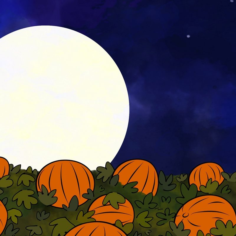 10 Most Popular The Great Pumpkin Wallpaper FULL HD 1920×1080 For PC Background 2020 free download its the great pumpkin charlie brown full hd wallpaper and 800x800