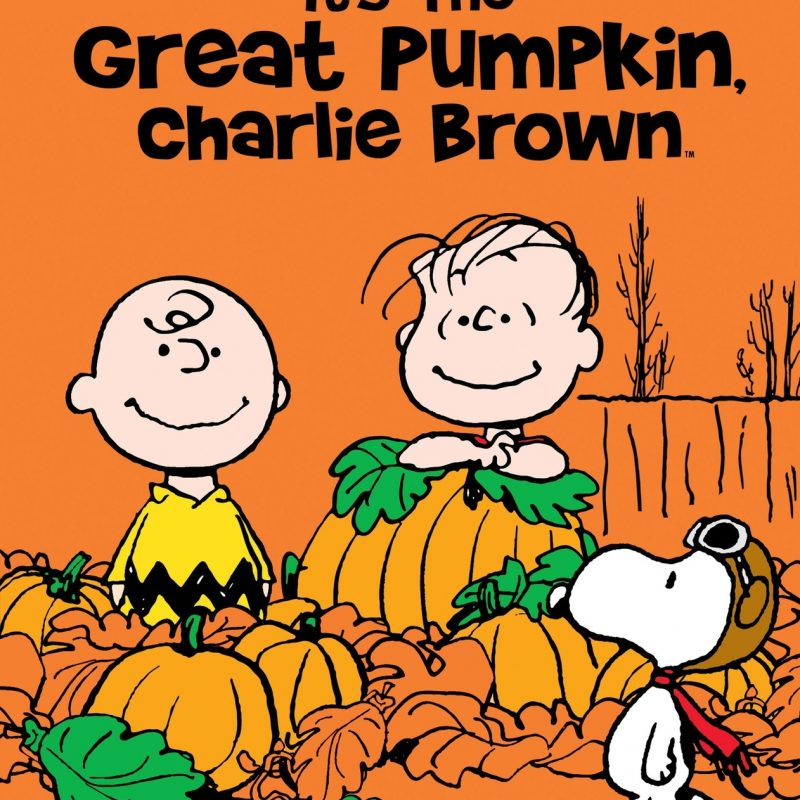 10 New Great Pumpkin Charlie Brown Pictures FULL HD 1920×1080 For PC Background 2021 free download its the great pumpkin charlie brown tv listings tv schedule and 800x800