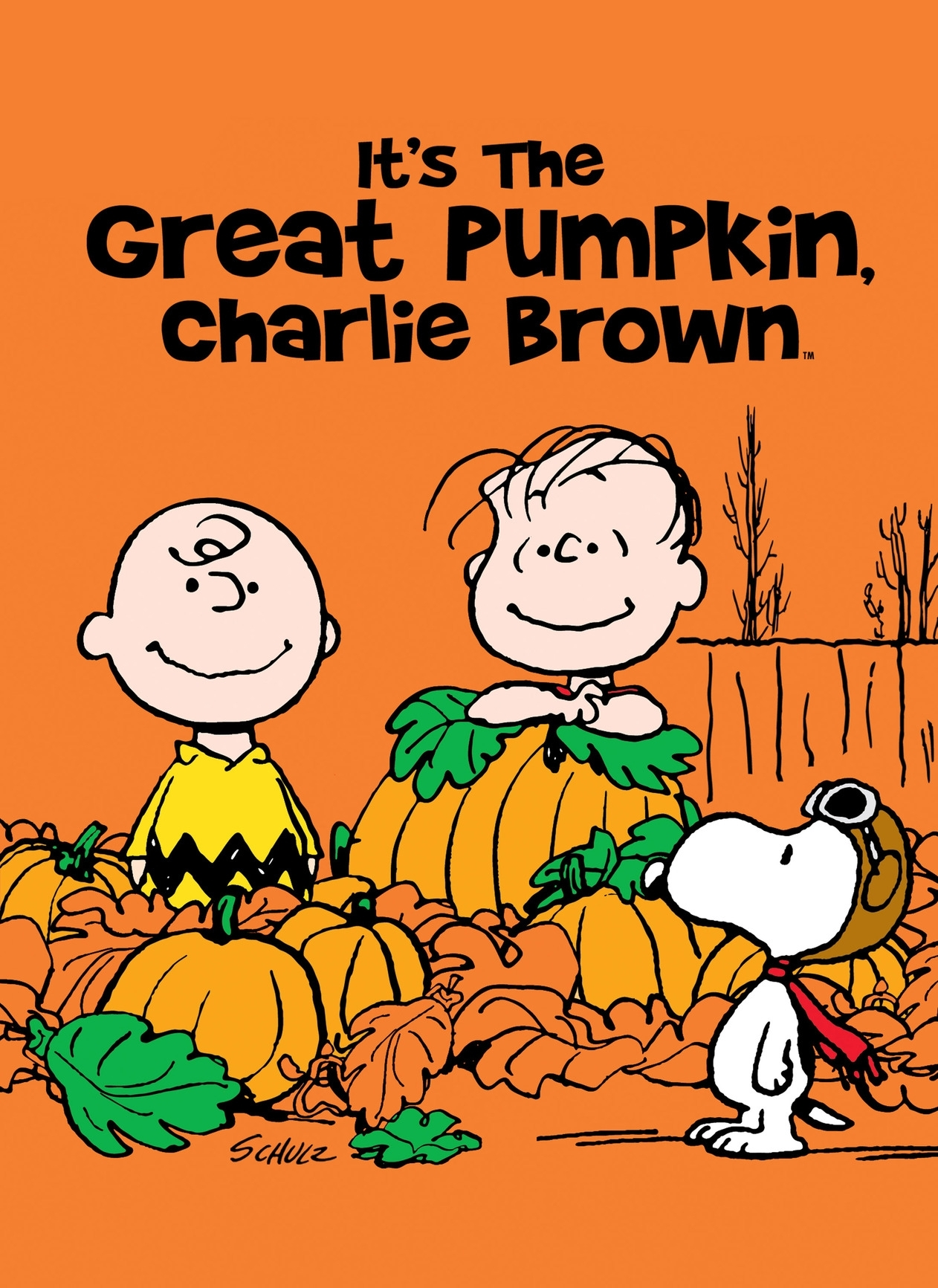 it's the great pumpkin, charlie brown tv listings, tv schedule and