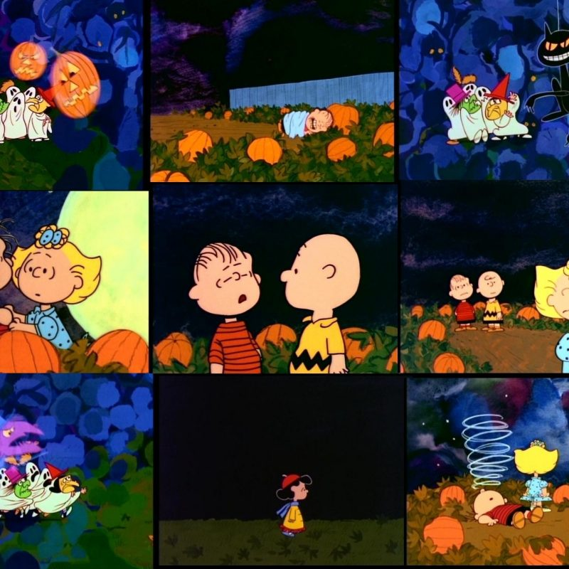 10 Latest Peanuts Halloween Desktop Wallpaper FULL HD 1920×1080 For PC Background 2020 free download its the great pumpkin charlie brown wallpaper and background 800x800
