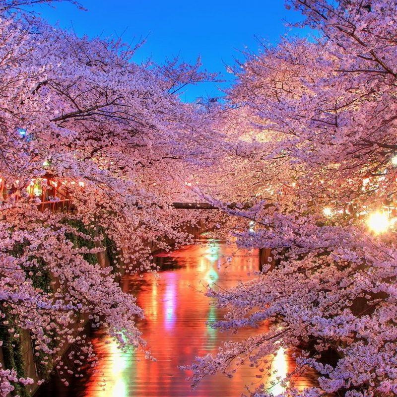 10 Best Beautiful Japan Wallpaper FULL HD 1080p For PC Desktop 2018 free download japan wallpapers best wallpapers 800x800