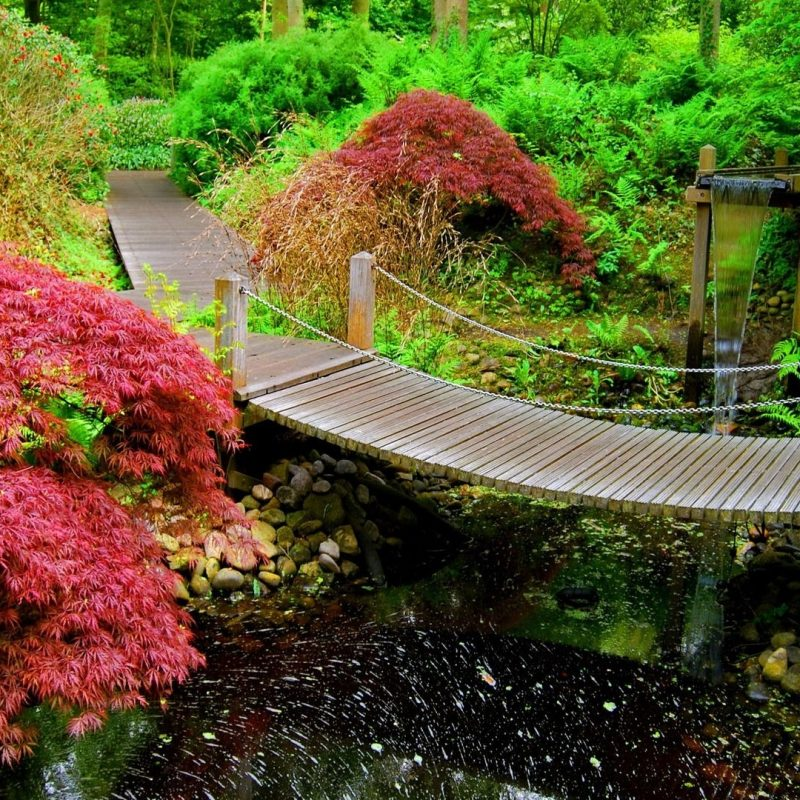 10 Top Japanese Garden Wallpaper Night FULL HD 1080p For PC Background 2018 free download japanese garden 2373 1920x1080 1 1920x1080 gardens 800x800