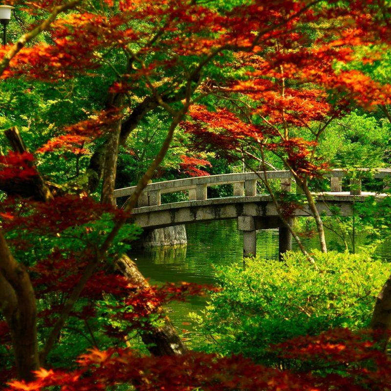 10 New Japanese Garden Desktop Wallpaper FULL HD 1080p For PC Background 2020 free download japanese garden kyoto e29da4 4k hd desktop wallpaper for 4k ultra hd 2 800x800