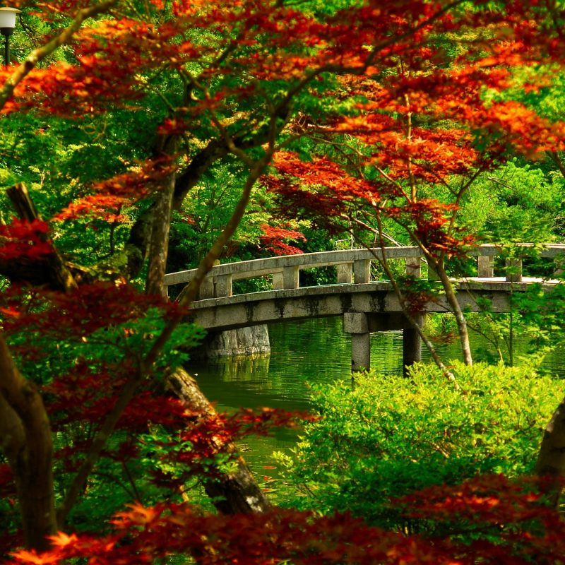 10 Best Zen Garden Wallpaper Hd FULL HD 1920×1080 For PC Desktop 2021 free download japanese garden kyoto e29da4 4k hd desktop wallpaper for 4k ultra hd 3 800x800