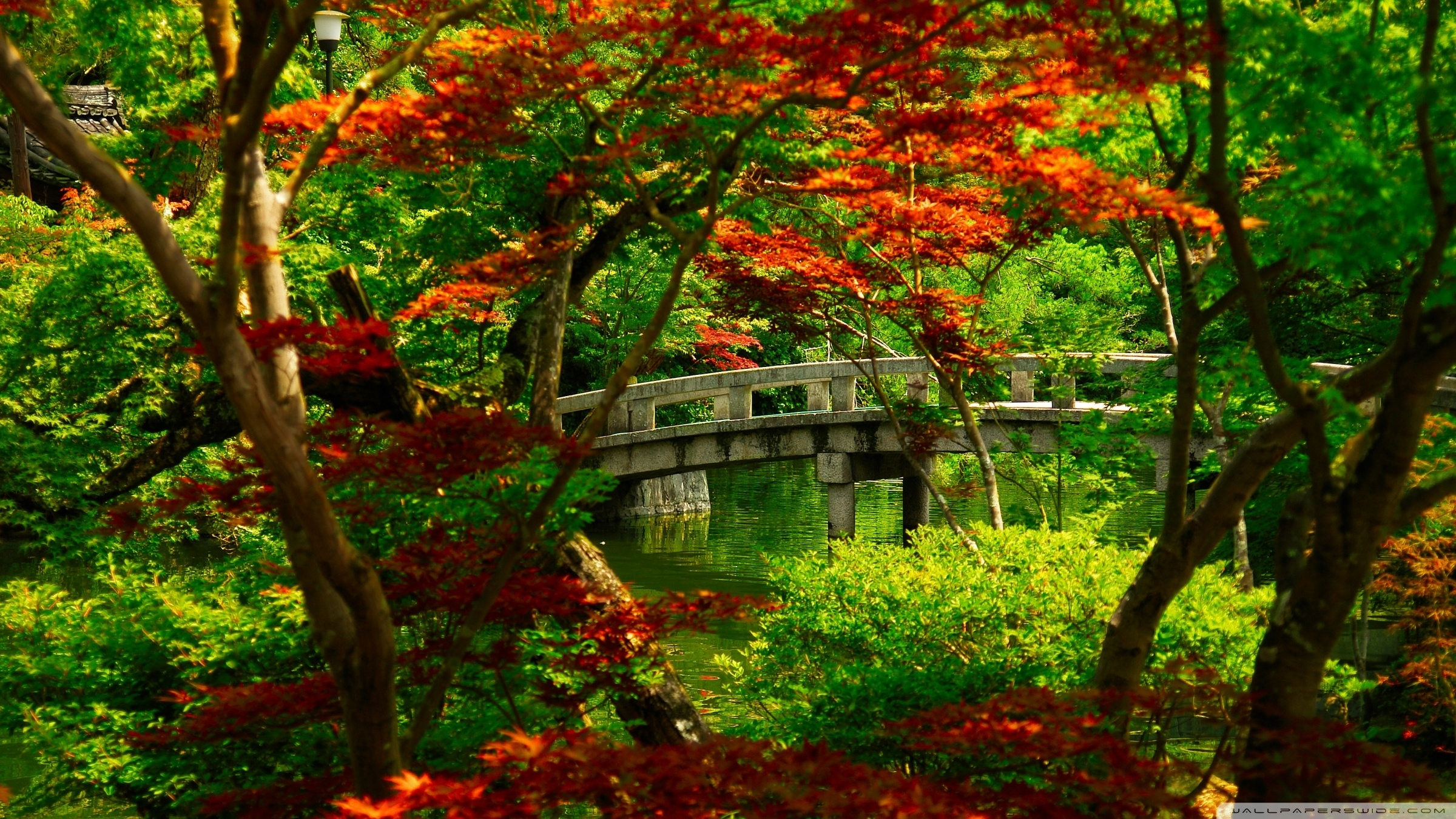 japanese garden (kyoto) ❤ 4k hd desktop wallpaper for 4k ultra hd