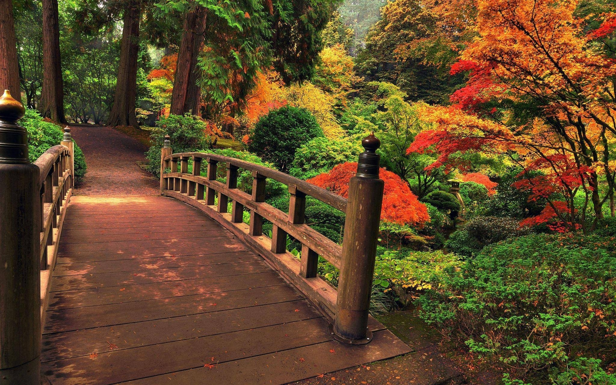 japanese garden wallpaper night