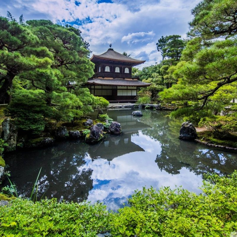 10 Top Japan Garden Wallpaper Hd FULL HD 1920×1080 For PC Background 2018 free download japanese garden wallpapers wallpaper cave 800x800