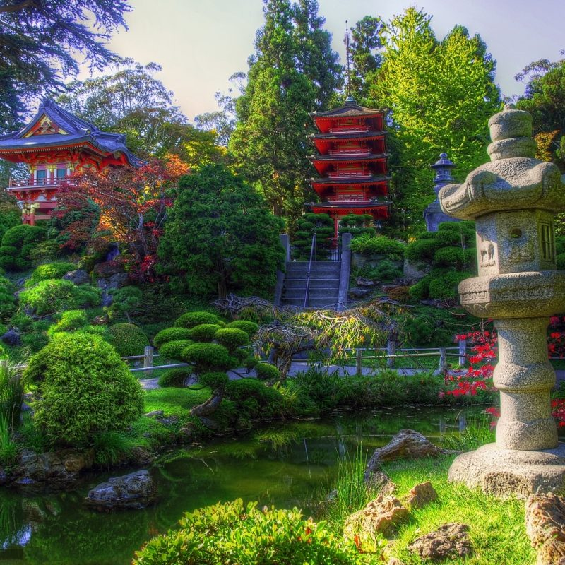 10 Most Popular Japanese Tea Garden Wallpaper FULL HD 1920×1080 For PC Background 2018 free download japanese tea garden wallpaper 2 800x800