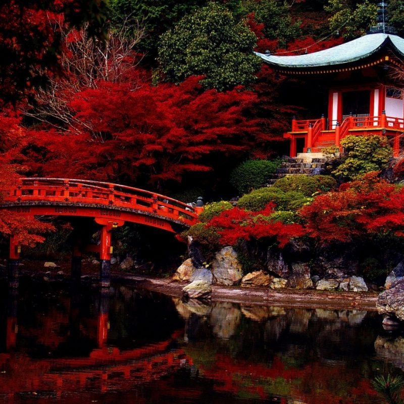 10 Most Popular Japanese Tea Garden Wallpaper FULL HD 1920×1080 For PC Background 2018 free download japanese tea garden wallpaper free nature wallpaper dudaite regarding japanese tea garden wallpaper 800x800