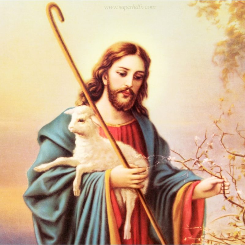 10 Best Hd Pics Of Jesus FULL HD 1920×1080 For PC Desktop 2018 free download jesus hd wallpaper superhdfx 800x800