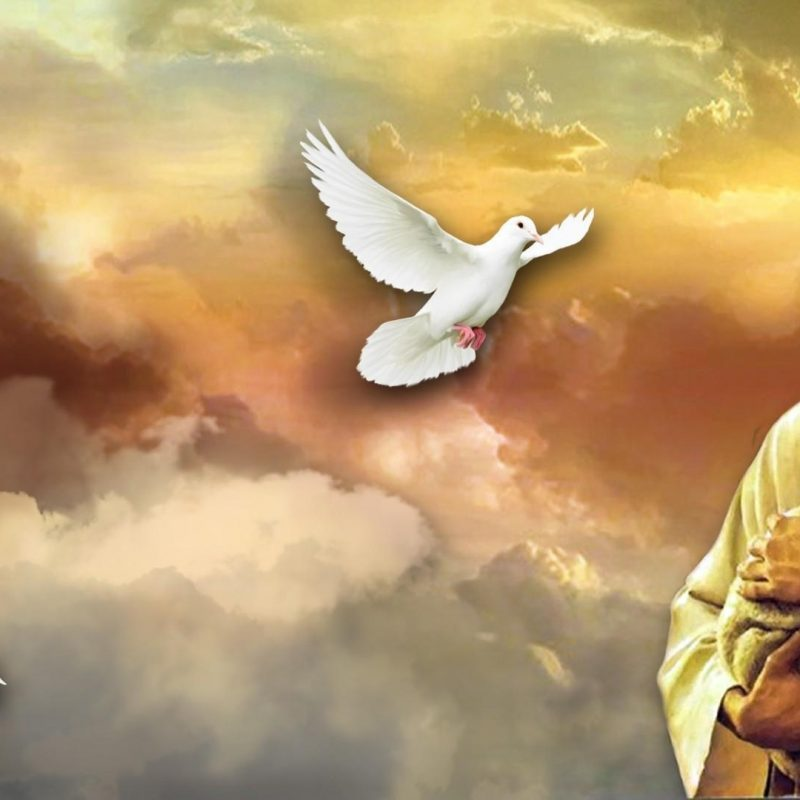 10 Latest Jesus Wallpaper Hd Widescreen FULL HD 1920×1080 For PC Background 2021 free download jesus hd wallpapers wallpaper cave 800x800