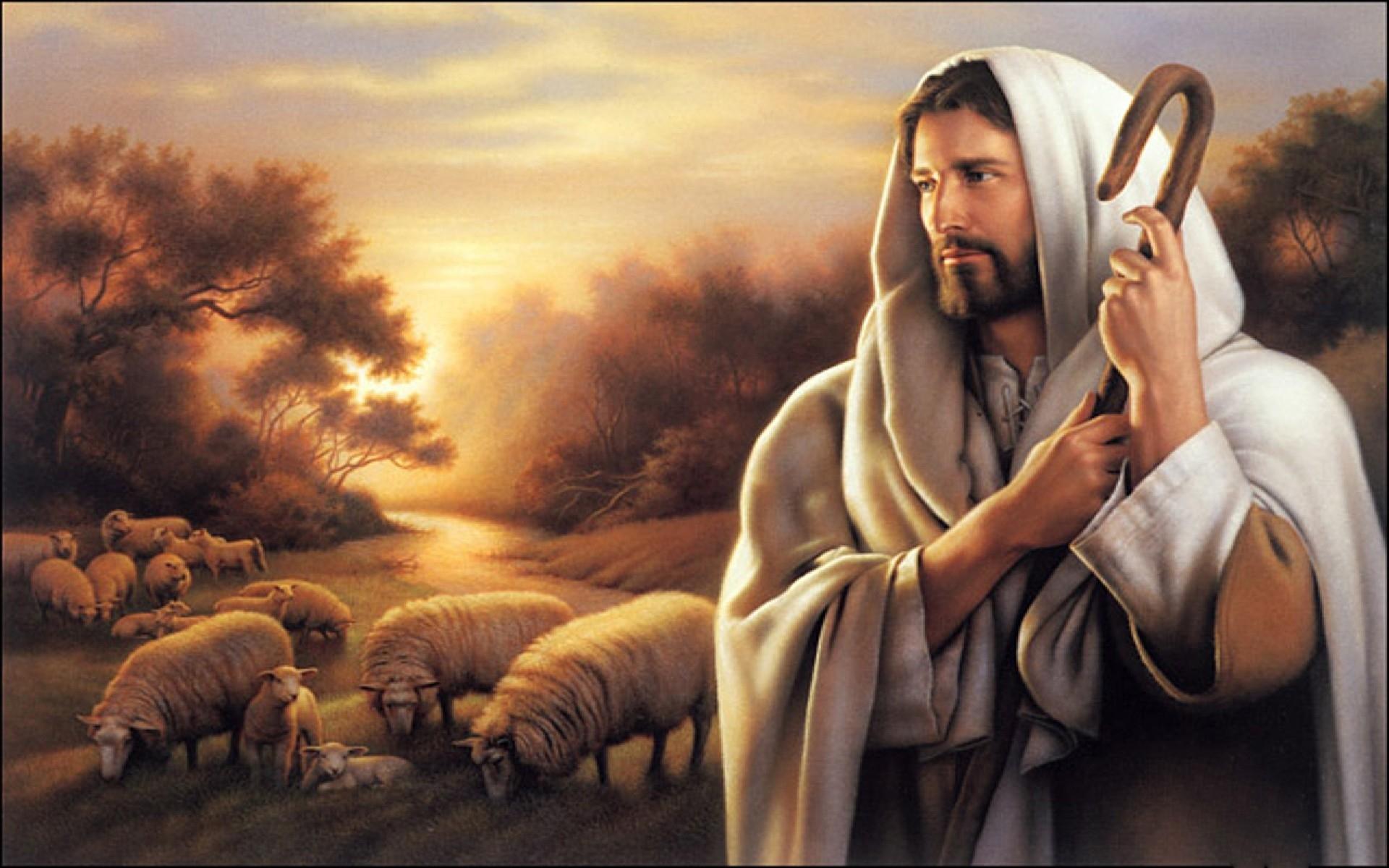 jesus shepherd hd wallpaper wallpapers - new hd wallpapers