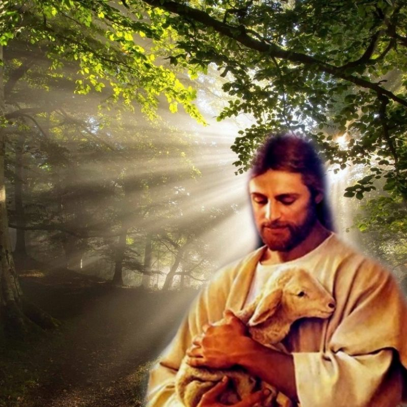 10 Best Hd Pics Of Jesus FULL HD 1920×1080 For PC Desktop 2018 free download jesus wallpapers free download group 53 1 800x800