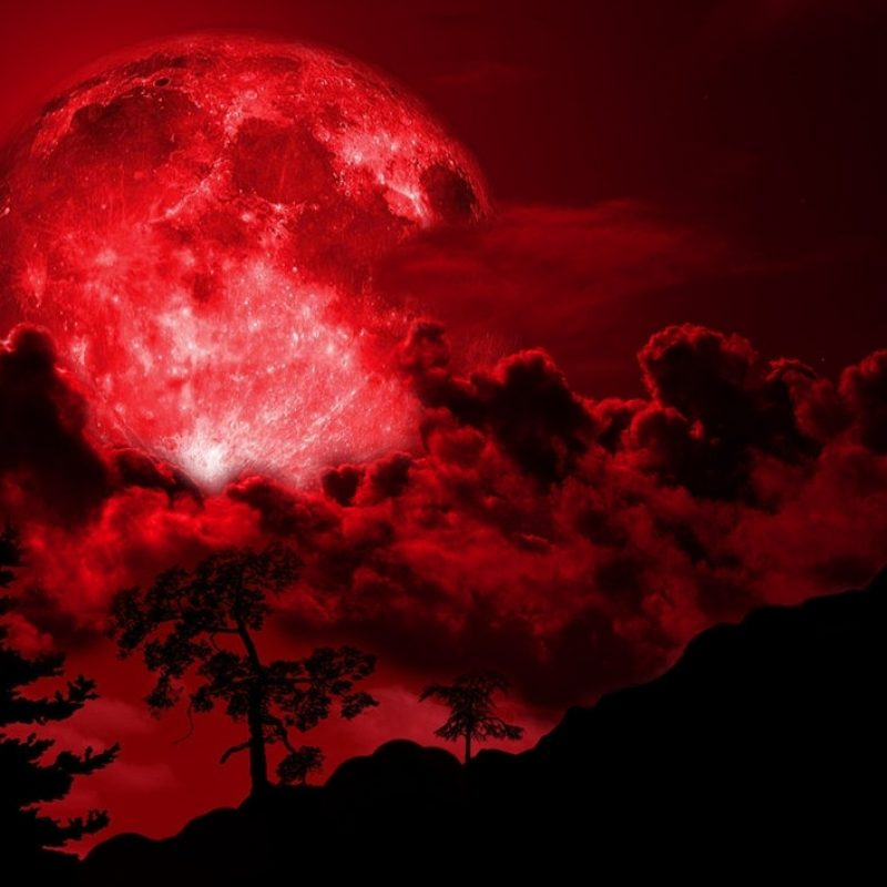 10 New Blood Moon Wallpaper Hd FULL HD 1080p For PC Background 2021 free download just howl images its the blood moon hd wallpaper and background 800x800