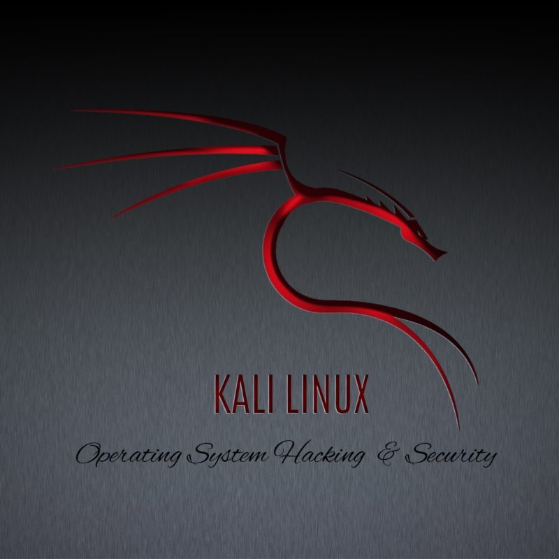 10 Latest Kali Linux Hd Wallpaper FULL HD 1080p For PC Desktop 2018 free download kali linux hd wallpapers 800x800