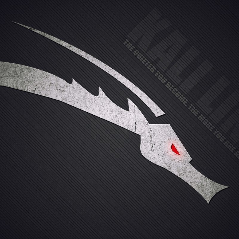 10 Latest Kali Linux Hd Wallpaper FULL HD 1080p For PC Desktop 2018 free download kali linux wallpaper hd 69 images 800x800