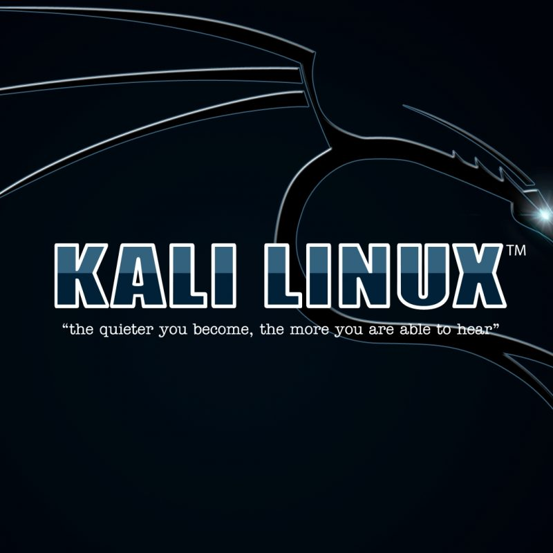10 Latest Kali Linux Hd Wallpaper FULL HD 1080p For PC Desktop 2018 free download kali linux wallpapers kali linux 800x800