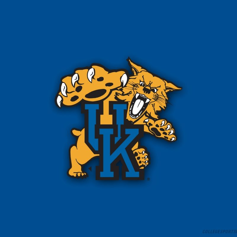 10 Most Popular Free Kentucky Wildcat Wallpaper FULL HD 1080p For PC Background 2018 free download kentucky wildcats images uk logo hd wallpaper and background photos 1 800x800