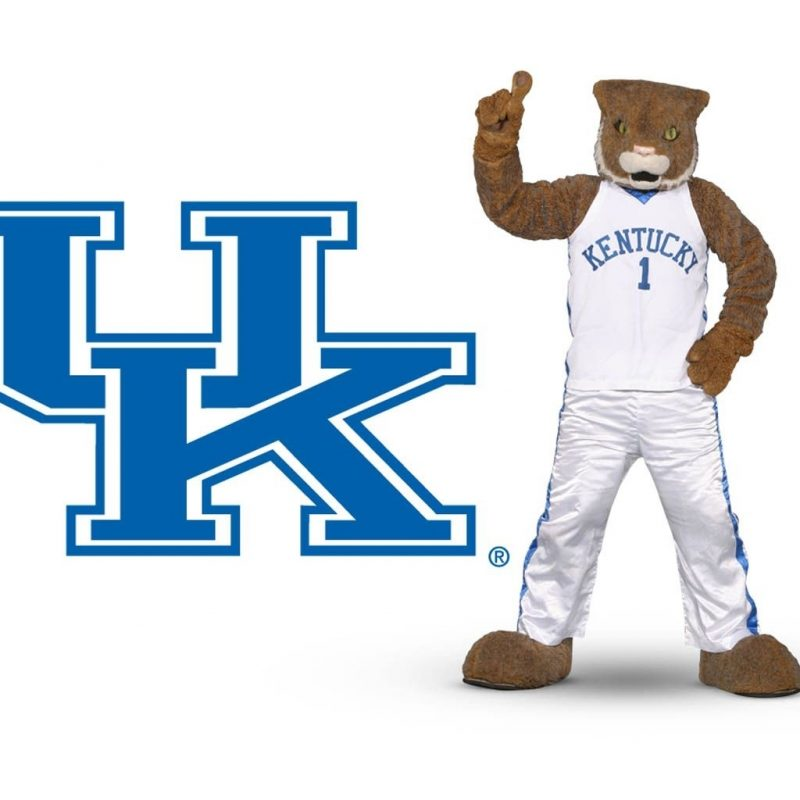 10 New Kentucky Wildcats Mascot Pictures FULL HD 1920×1080 For PC Desktop 2018 free download kentucky wildcats mascot wildcat wallpapers put the cats on your 800x800