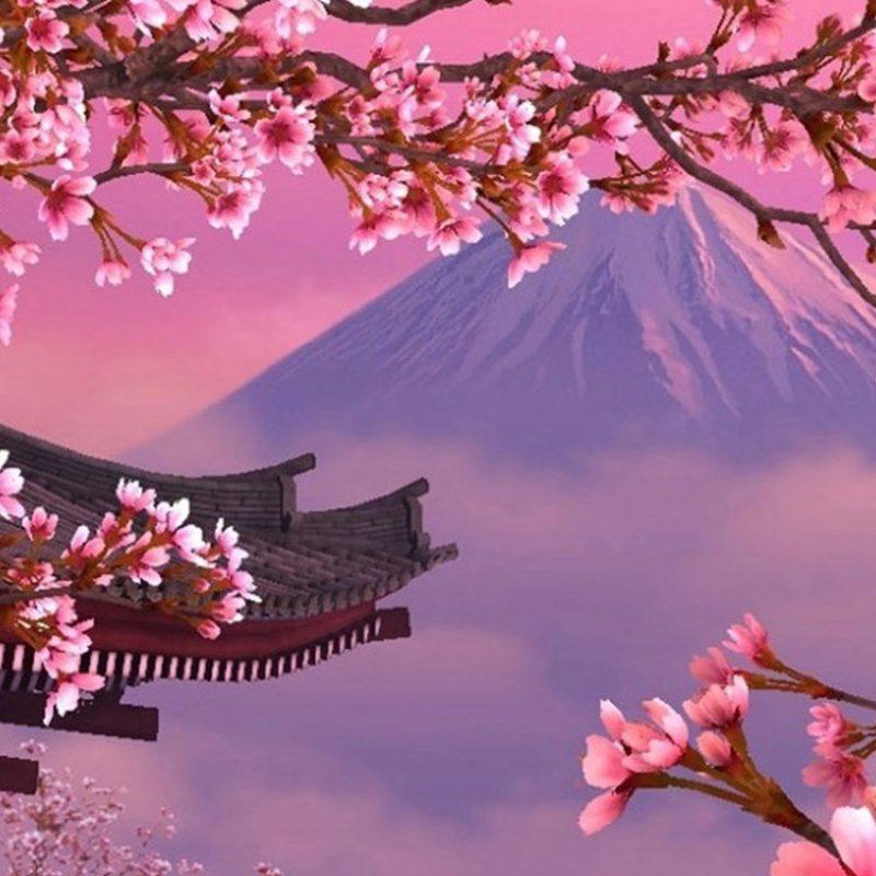 10 Latest Cherry Blossom Wallpaper Iphone FULL HD 1920×1080 For PC Desktop 2020 free download ket qua hinh anh cho fond d ecran iphone 6 stock pinterest 800x800