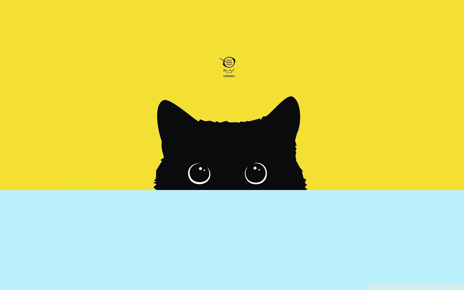kitty ❤ 4k hd desktop wallpaper for 4k ultra hd tv • tablet